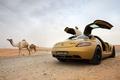 Picture desert, mercedes, benz, sls, amg, camels
