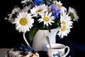 Picture still life, chamomile, tea, cupcake, cornflowers, blueberries