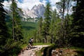 Picture athlete, cyclist, mountains, forest, trail