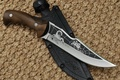 Picture knife, case, edged weapons, Scorpio, Russia, spider