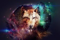 Picture space, wolves, ball