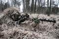 Picture ambush, disguise, Sniper, sniper rifle