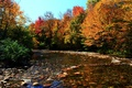Picture forest, Fall, Colors, autumn, Stones, Autumn, River, River
