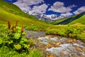 Picture meadows, nature, the sky, grass, river, landscape