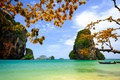 Picture sea, branch, the sky, rocks, leaves, Vietnam