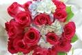 Picture photo, Flowers, Bouquet, Roses, Hydrangea