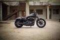 Picture moto, american, Harley-Davidson, iron, Sportster, v-tvin, 883