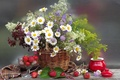 Picture flowers, bouquet, nature, basket, flower, berries, chamomile, summer, basket, strawberry