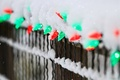 Picture garland, holidays, snow, red, winter, fence, lights, the fence, green