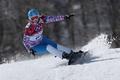 Picture Russia, Sochi 2014, The XXII Winter Olympic Games, Alena Zavarzina, Snowboarding:parallel giant slalom