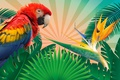 Picture tropics, branches, bird, leaves, parrot, background, rendering, colorful, vector, feathers