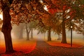 Picture autumn, leaves, trees, sunset, nature, lights, Park, lantern, alley, trees, nature, sunset, park, autumn, view, ...