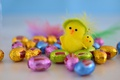 Picture colorful, easter, chick, easter chick, chocolate eggs
