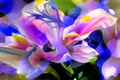 Picture nature, abstraction, petals, flower, plant