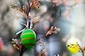 Picture EGG, NATURE, EASTER, MACRO, COLOR, GREEN, BRANCH