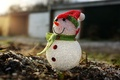 Picture macro, holiday, Snowman