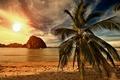 Picture sand, sea, beach, sunset, tropics, palm trees, shore, beach, sea, ocean, sunset, paradise, palms, tropical