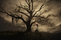 Picture tree, The Witcher 3:Wild Hunt, The Witcher, night, gallows