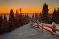 Picture Landscape, Nature, Sunrise, Winter, Sun, Firs, Snow