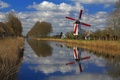 Picture trees, reflection, spring, channel, Belgium, Flanders, windmill