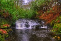 Picture trees, stream, England, waterfall, moss, hdr, cascade, the bushes, thresholds, Lancashire, Upper Anglezarke waterfall
