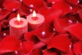 Picture love, heart, roses, candles, petals, love, heart, romantic, Valentine's Day