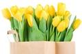 Picture bouquet, box, tulips