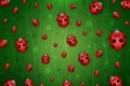 Picture ladybugs, green, background