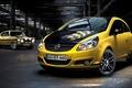 Picture 2015, Opel, Opel