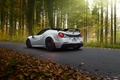 Picture Pogea Racing, Alfa Romeo, Alfa Romeo