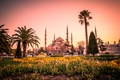 Picture lawn, beds, Palace, Turkey, Istanbul, temple, tulips, The blue mosque, tower, Sultan Ahmed Mosque, Blue ...