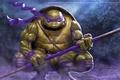 Picture ninja, bug, Donatello