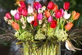 Picture bird, spring, colorful, tulips, decoration, tulips, bouquet