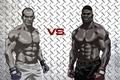 Picture fights without rules, mma, ufc