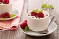 Picture cream, milk, dessert, dessert, fruits, raspberries, yogurt, raspberry, fruit, yogurt, cream, cups, food