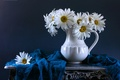 Picture flowers, chamomile, still life, shawl, decanter