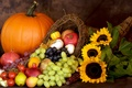 Picture autumn, harvest, pumpkin, autumn, leaves, nuts, still life, fruits, pumpkin, harvest, distal