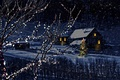 Picture Magic Christmas night, Magic Christmas Night, merry christmas, snow, winter, city, the city, trees, Nature, ...