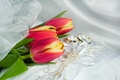 Picture decoration, ring, tulips, ribbons
