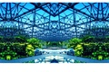 Picture greenhouse, bright, design, steel, vegetation