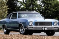 Picture blue, Chevrolet, Chevrolet, 1971, the front, 454, Muscle car, Muscle car, foliage.trees, Monte Carlo, Monte ...