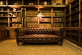 Picture room, books, Sofa, library