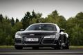 Picture auto, road, trees, Audi R8 V10