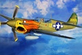 Picture P-40N Warhawk `The 502nd FS`, painting, fighter, airplane, war, art