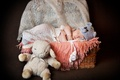Picture basket, hat, toy, sleep, baby, child