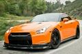 Picture road, Nissan GTR, orange, R35