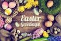 Picture flowers, eggs, flowers, eggs, Easter, decor, Easter