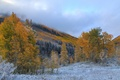 Picture the sky, snow, mountains, trees, autumn, clouds