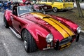 Picture Cobra, classic, the front, Cobra
