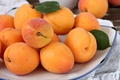 Picture summer, yellow, fruit, apricots, delicious